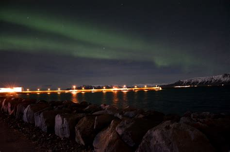 Northern Lights By Boat by Horses Northern Lights By Boat Guide To Iceland
