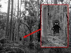Flatwoods Monster Sightings with Pictures Proved it is ...