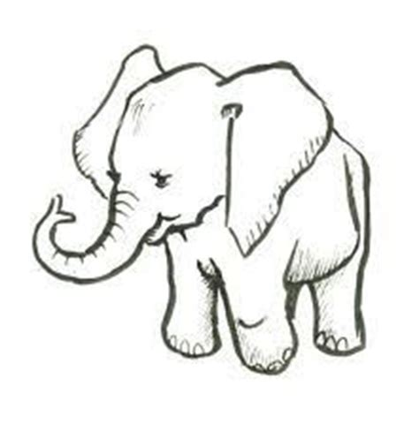 ideas  easy drawings  animals  pinterest