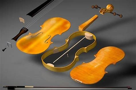 Best Images About Violin Anatomy Pinterest