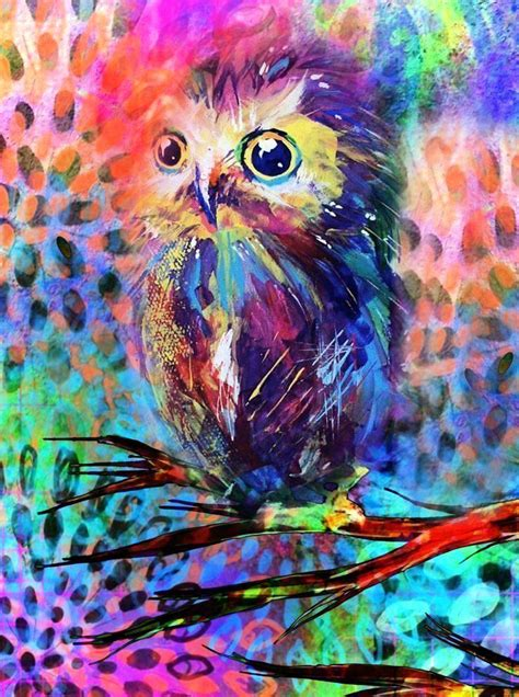 owl colors 25 best ideas about colorful owl on cool