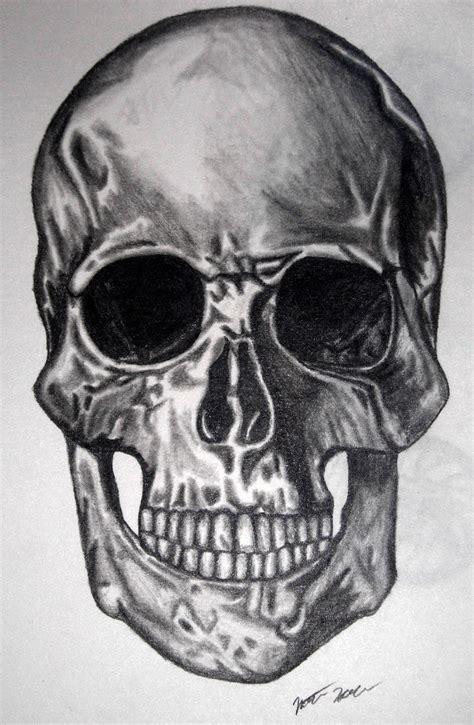 Nathan Art Anatomy Human Skull