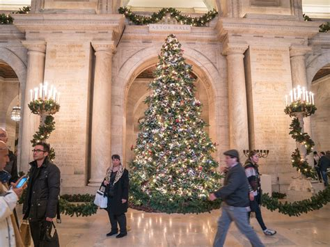 Where To Find 12 Of Nyc's Festive Christmas Trees  Curbed Ny