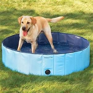 Bodenbelag Für Hunde Geeignet : doggy pool hundepool f r hunde 80 120 160 cm 160x30cm ~ Lizthompson.info Haus und Dekorationen
