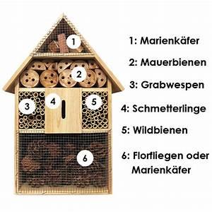 Tiere Im Insektenhotel : insektenhotels g nstig online kaufen ~ Whattoseeinmadrid.com Haus und Dekorationen