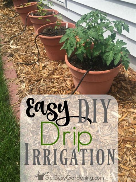 25 best ideas about drip irrigation on