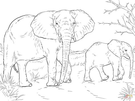 african elephant mother  baby super coloring