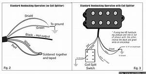 Carvin Kit Wiring Diagram
