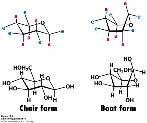 most stable chair conformation of glucose kevin ahern s biochemistry bb 450 550 at oregon state