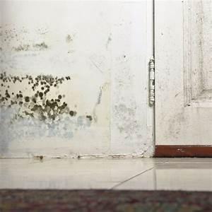 Dunkle Flecken An Der Wand : bauen leben sortiment t ren fenster ~ Watch28wear.com Haus und Dekorationen