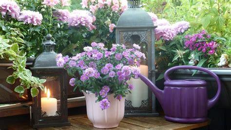 garden balcony plants flower magazine windowsill artimondo options outdoor flowers