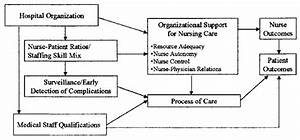 Hospital Organization  Nursing Organization And Patient