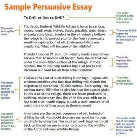 Short essays about depression best writing the essay nyu professors best writing the essay nyu professors alfie kohn homework an unnecessary evil