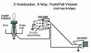 2 Hums  3 Way Switch  Coil Tap Bridge