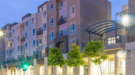 41 Dog And Pet Friendly Apartment Complexes In San
