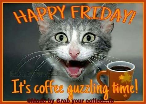 coffee guzzling time happy friday pictures