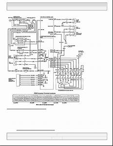 Honda Element  Manual