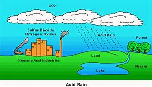 Science In The News  Acid Rain