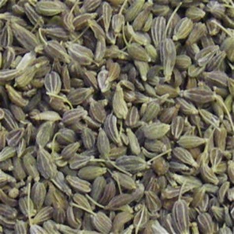 aniseed  foods