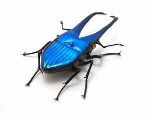 glass sculptor Wesley Fleming - artwork, 'Mini Blue Stag ...