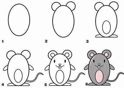 Animals Draw Easy Mouse Animal Step Simple