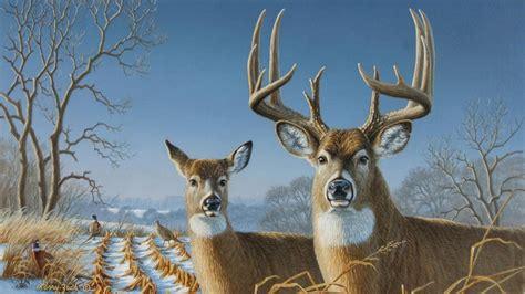Deer Hunting Desktop Wallpaper Free Hunting Wallpaper And Screensavers Wallpapersafari