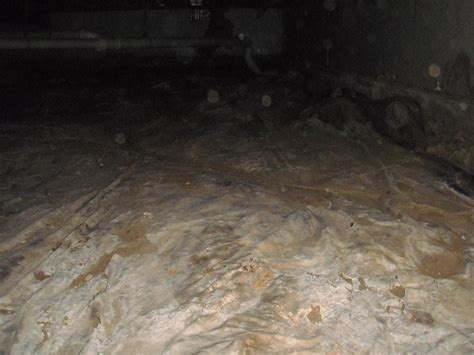 woods basement systems  crawl space repair photo