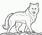 Wolf Coloring Printable Animal Wolves Cool Outline Sheets Drawing Mysterious Bestcoloringpagesforkids Wild Dog sketch template