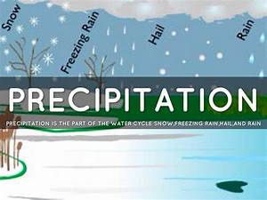 Precipitation Water Cycle  Definition  Examples  U0026 Different Stages