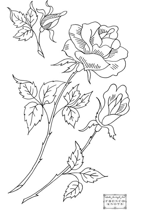 embroidery transfer patterns  beautiful roses french knots