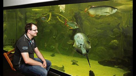 aquarium 500 liter inhalt 500 badewannen riesiges privates aquarium in niestetal