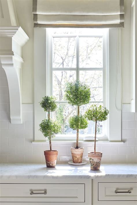 Kitchen Window Plants by The Highlands Bartholomew Classic White Kitchen