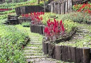 Rondin De Bois Pour Jardin : bordure de jardin en bois utilit installation ooreka ~ Edinachiropracticcenter.com Idées de Décoration