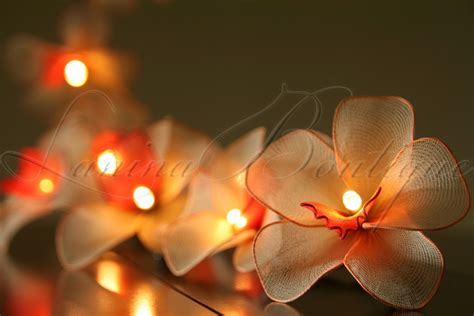 20  35 Led Nylon Orchid Flower String Fairy Lights Aus