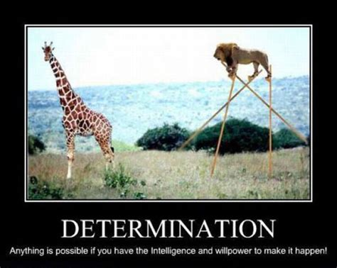 funny motivational posters fun toxin