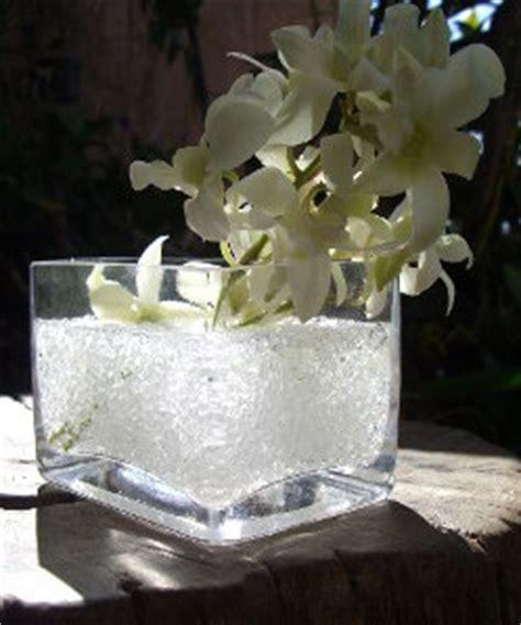 Color Fill Vase Filler by Garden Splendor Colorfill Vase Filler 1lb White