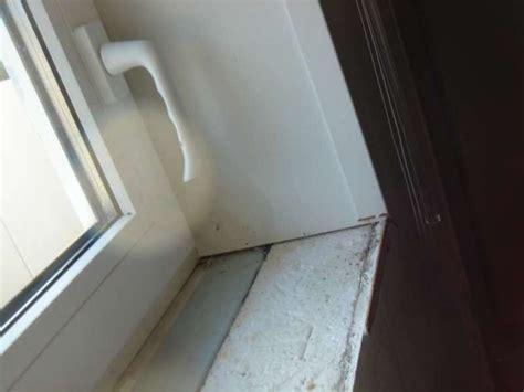 gipskartonplatten mit styropor bau de forum keller 12868 kellerwohnung innen isoliert schwitzwasser an den fenstern
