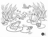 Pond Coloring Adult Printables Frog Template Parks Recreation Templates Sketch sketch template