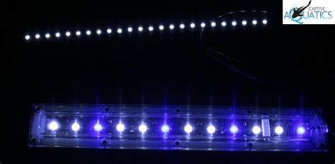 ecoxotic led aquarium lighting impression