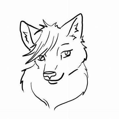 Wolf Animation Face Animated Test Deviantart Groups