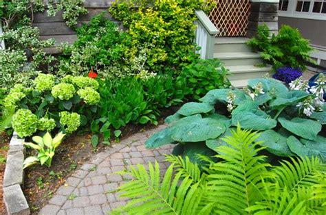 beautiful small garden   house  ideas