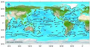 Fukushima radiation helps researchers study ocean currents ...