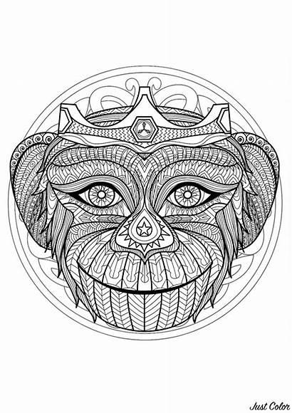 Mandala Head Monkey Coloring Patterns Mandalas Gorgeous