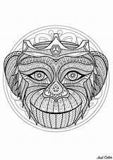 Mandala Difficult Head Monkey Mandalas Coloring Adults Intricate Pens Complex Colors Pencils Prepare Zen Level Decide Instincts Areas Feel Choose sketch template