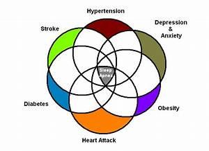 Sleep And Neurology  Obstructive Sleep Apnea 101  The Main
