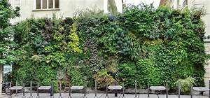 Mur Végétal Extérieur : mur vegetal exterieur excellent crez un mur vgtal en ~ Premium-room.com Idées de Décoration