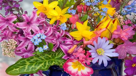colorful flowers colorful flower wallpaper