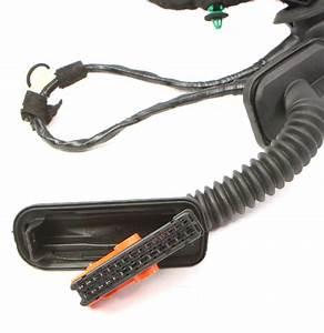 Rh Rear Door Wiring Harness 11
