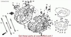 Honda Trx200sx Fourtrax 200sx 1988 Usa Parts Lists