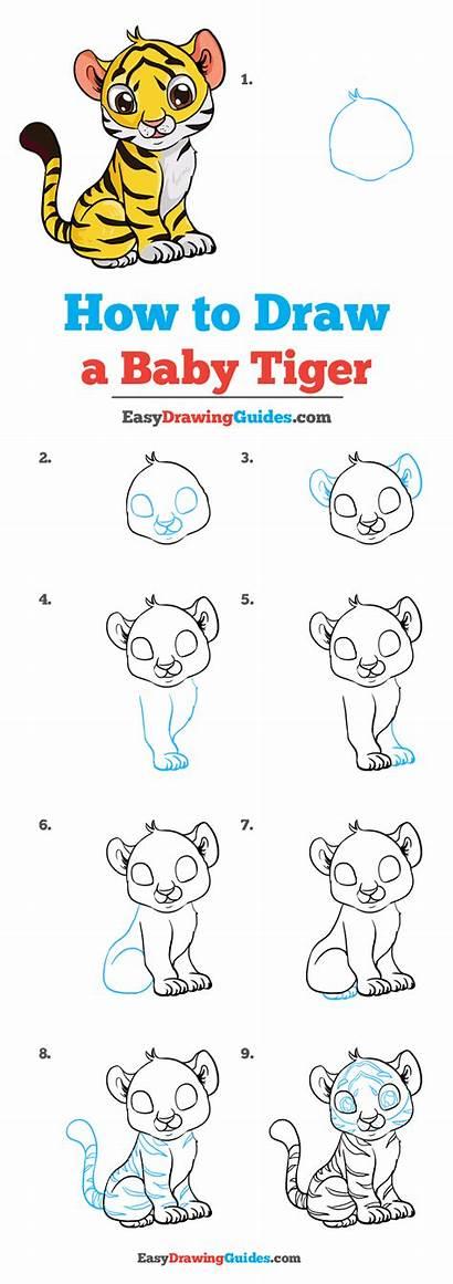 Tiger Draw Drawing Easy Tutorial Drawings Cartoon